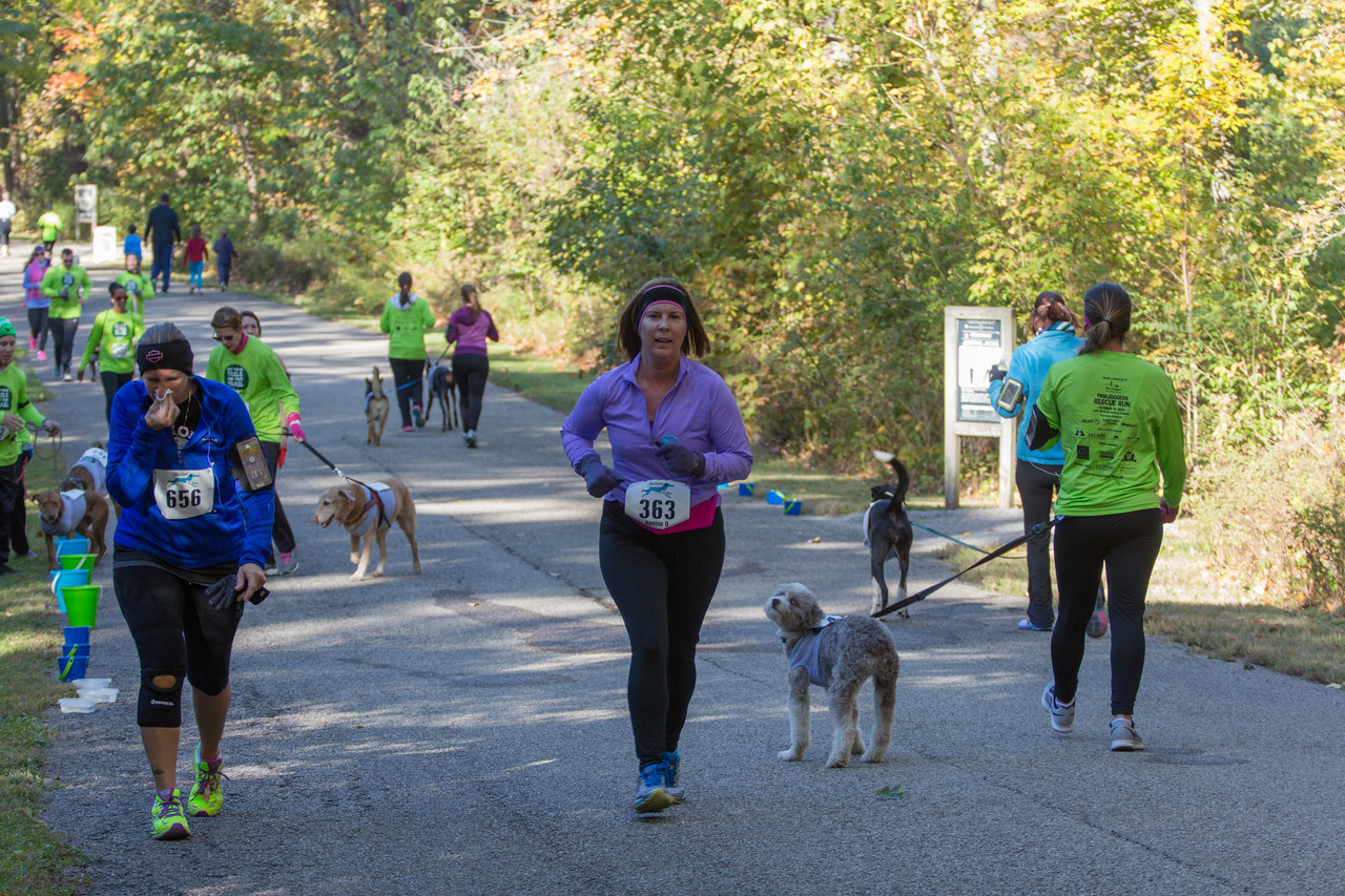 2015Pawjoggers-7045