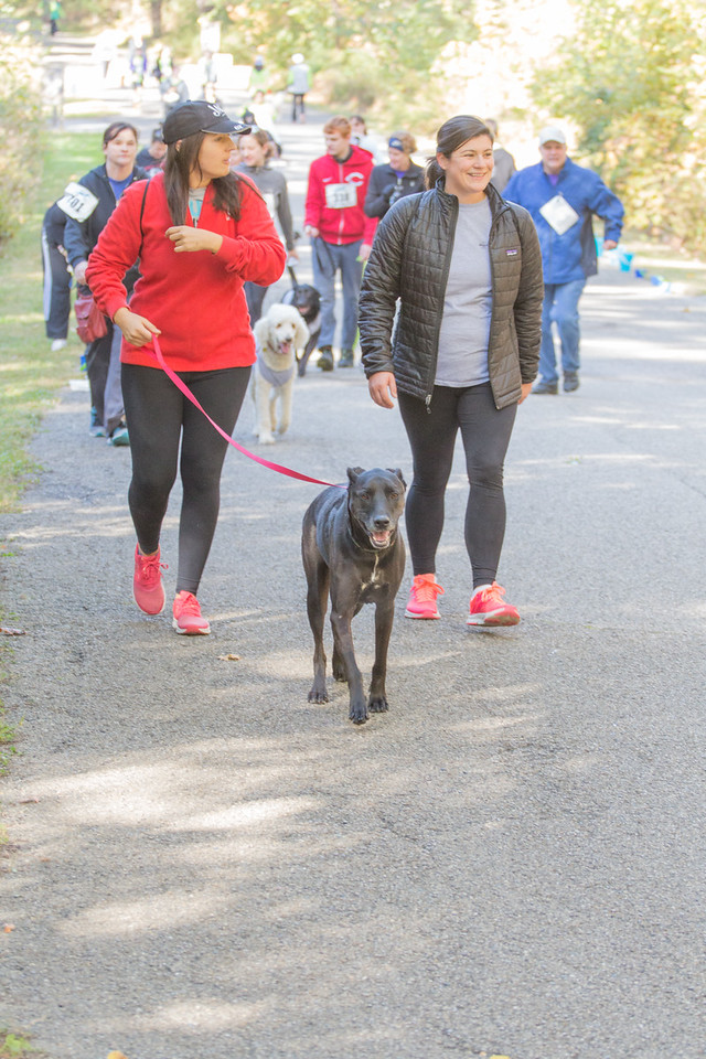 2015Pawjoggers-7443
