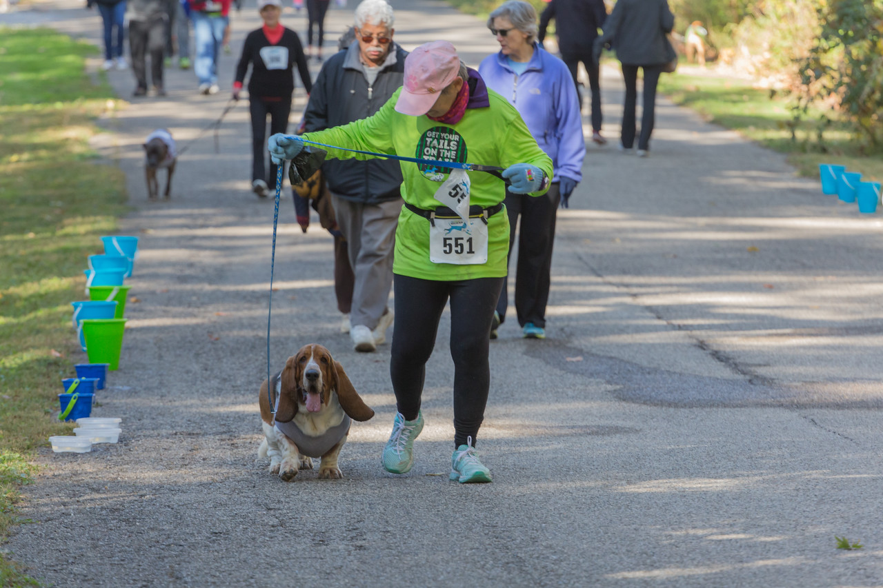 2015Pawjoggers-7695
