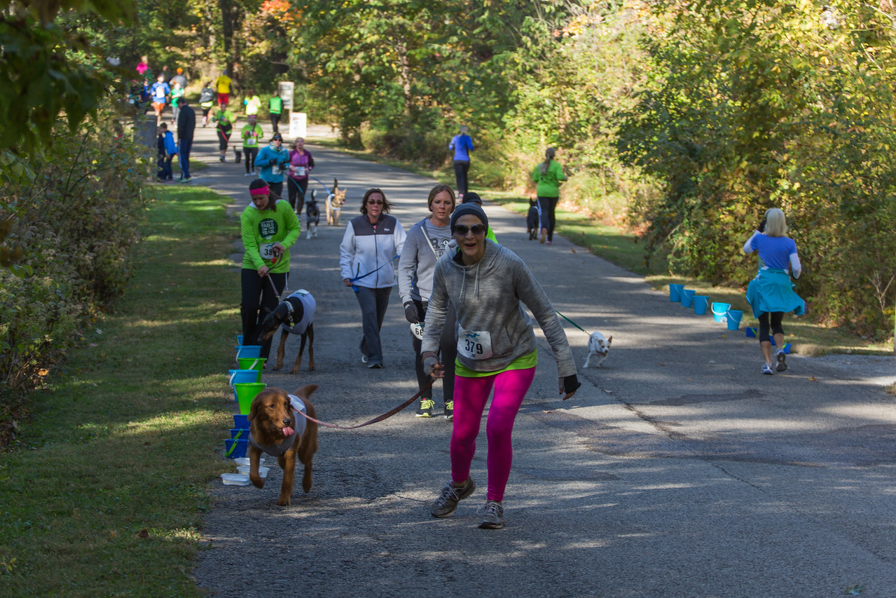 2015Pawjoggers-6973