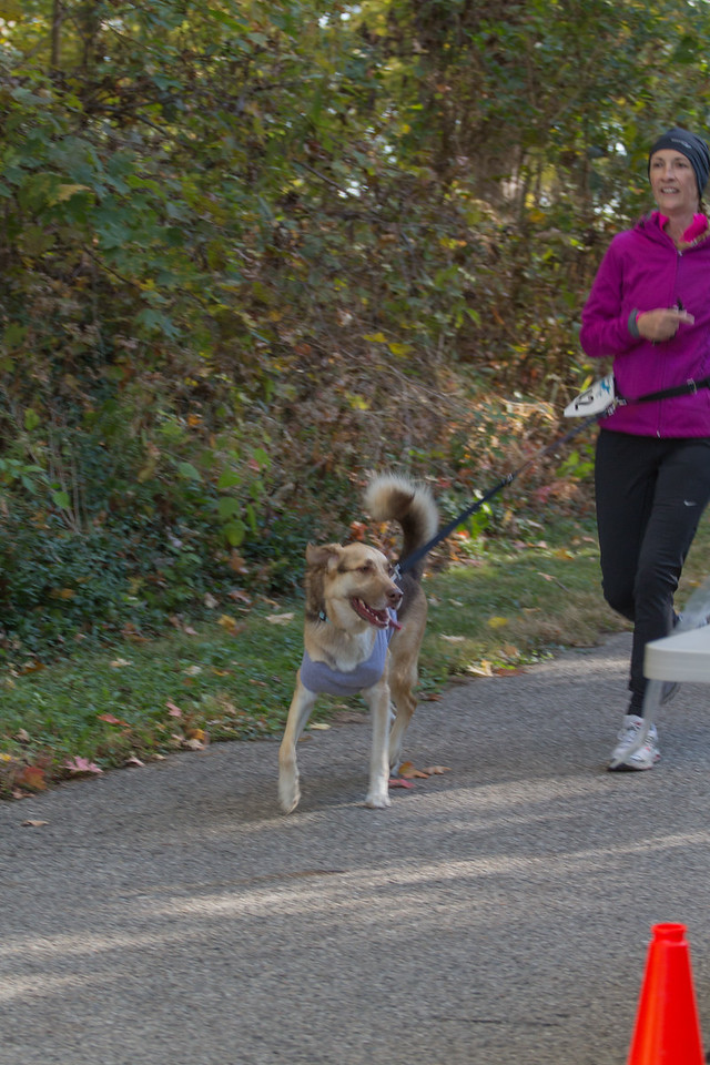 2015Pawjoggers-6829