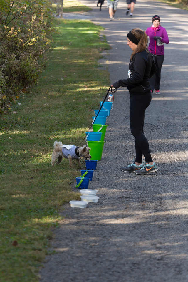 2015Pawjoggers-6857