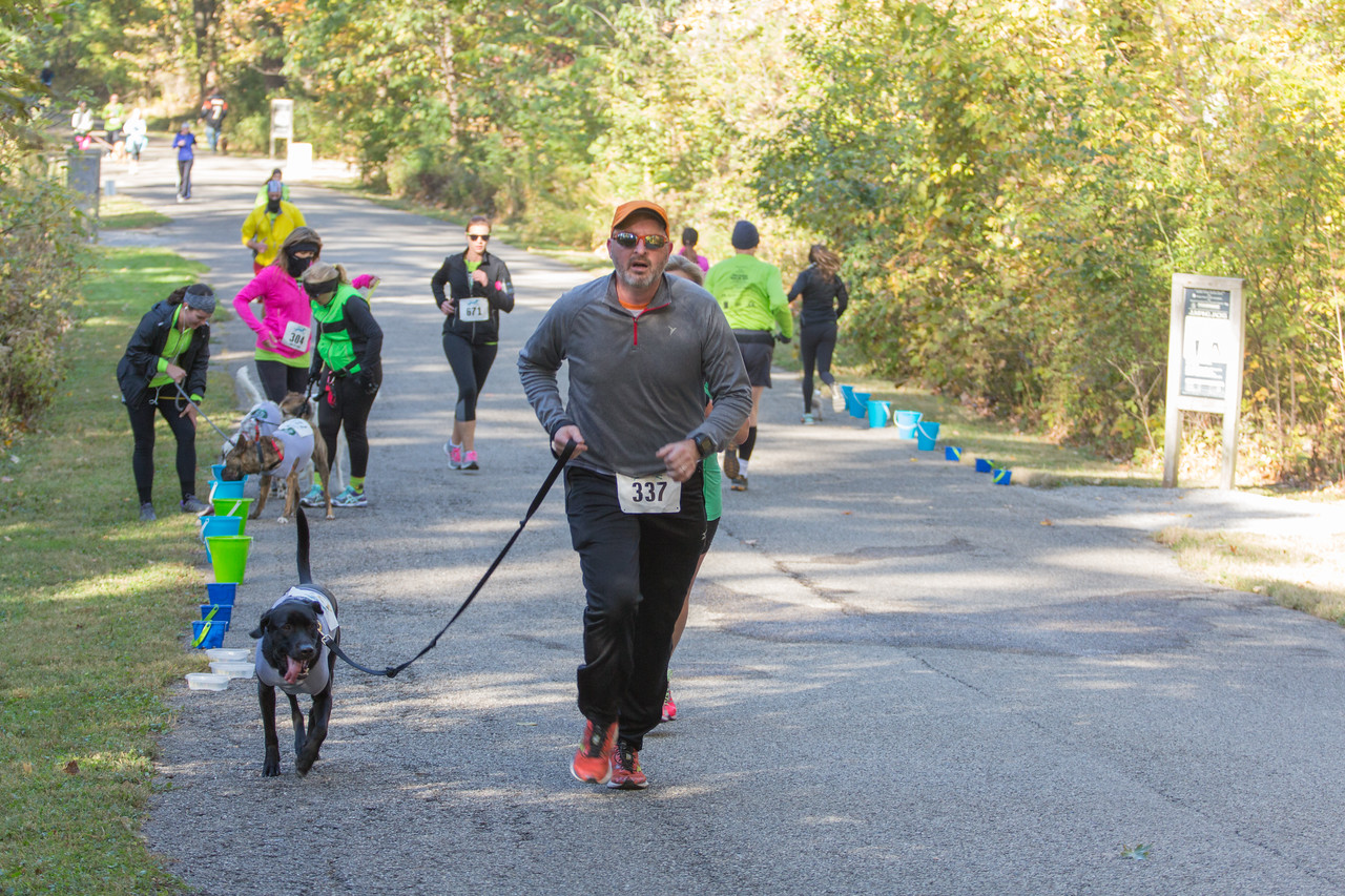 2015Pawjoggers-6908