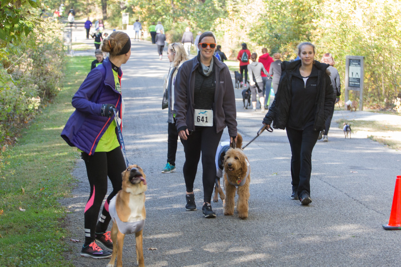 2015Pawjoggers-7501