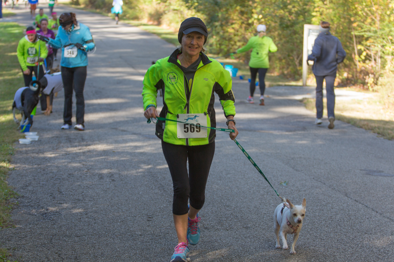 2015Pawjoggers-6988
