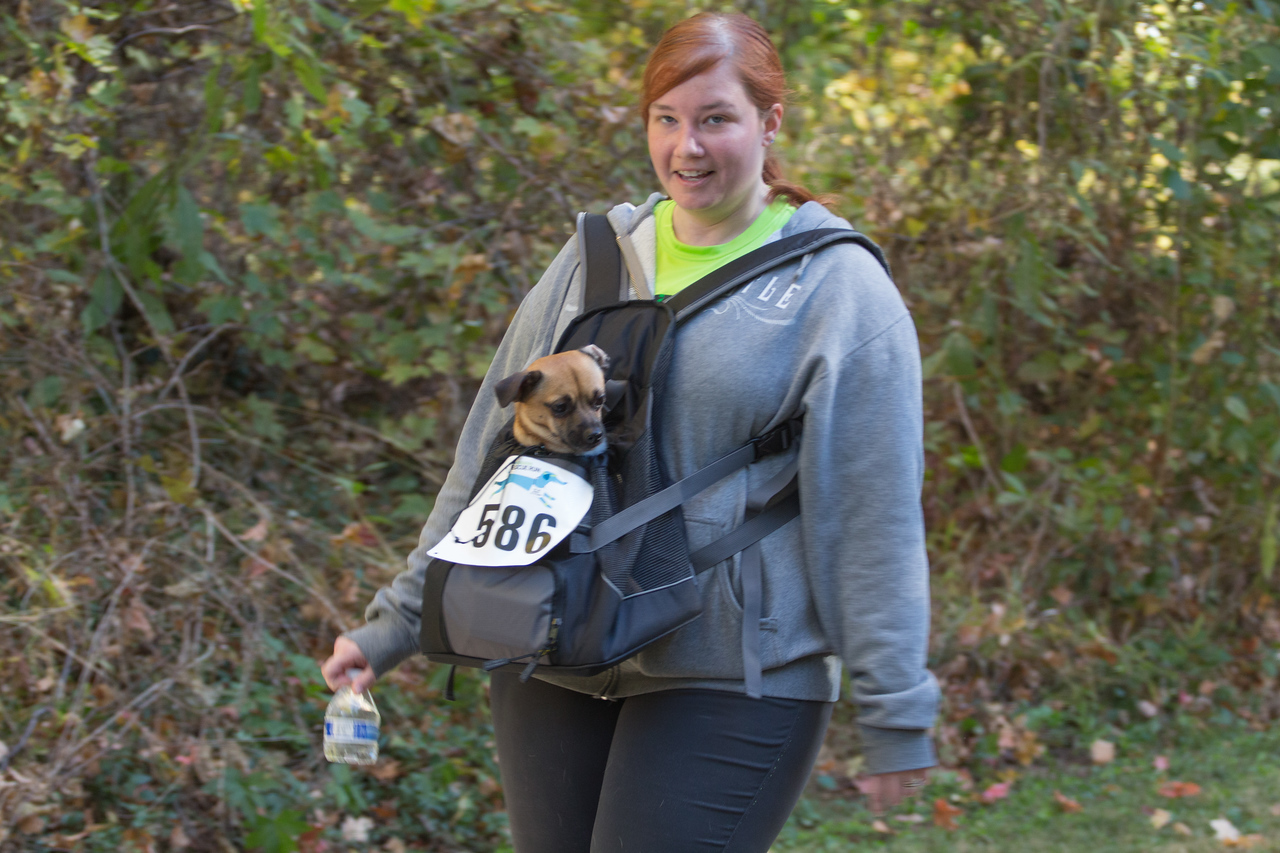 2015Pawjoggers-7506