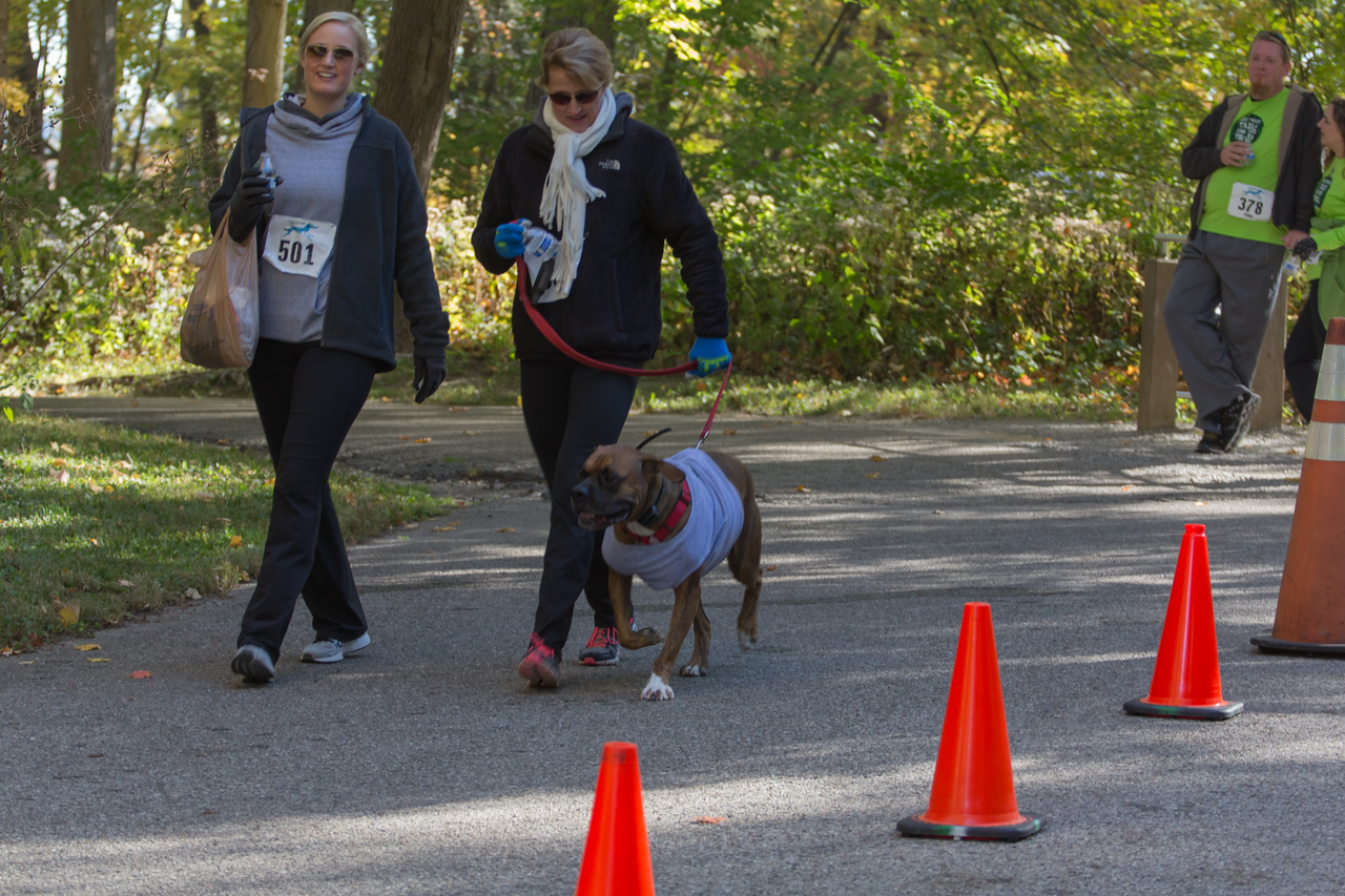 2015Pawjoggers-7661