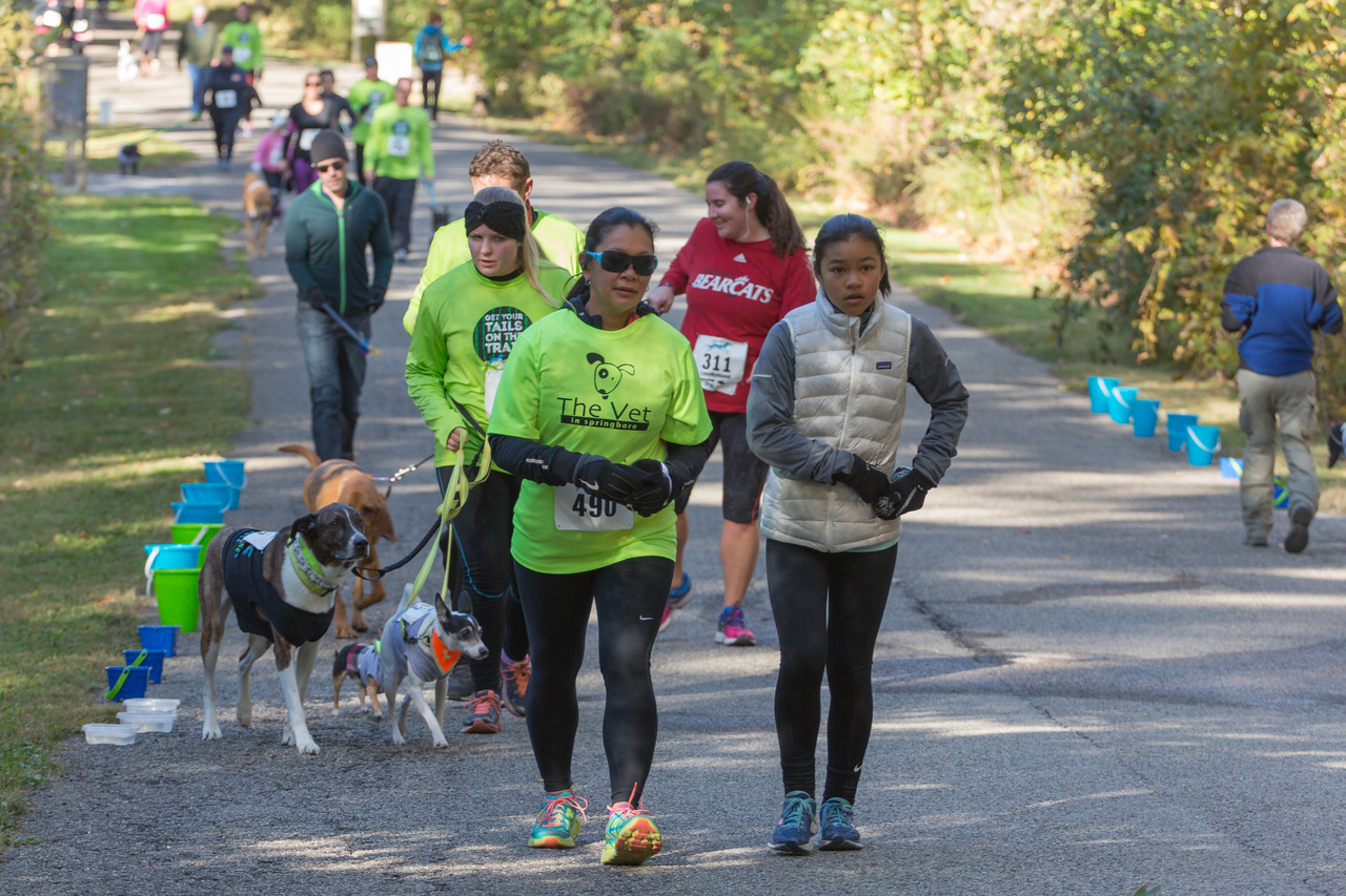 2015Pawjoggers-7209