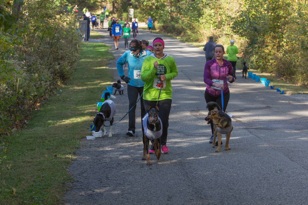 2015Pawjoggers-6992