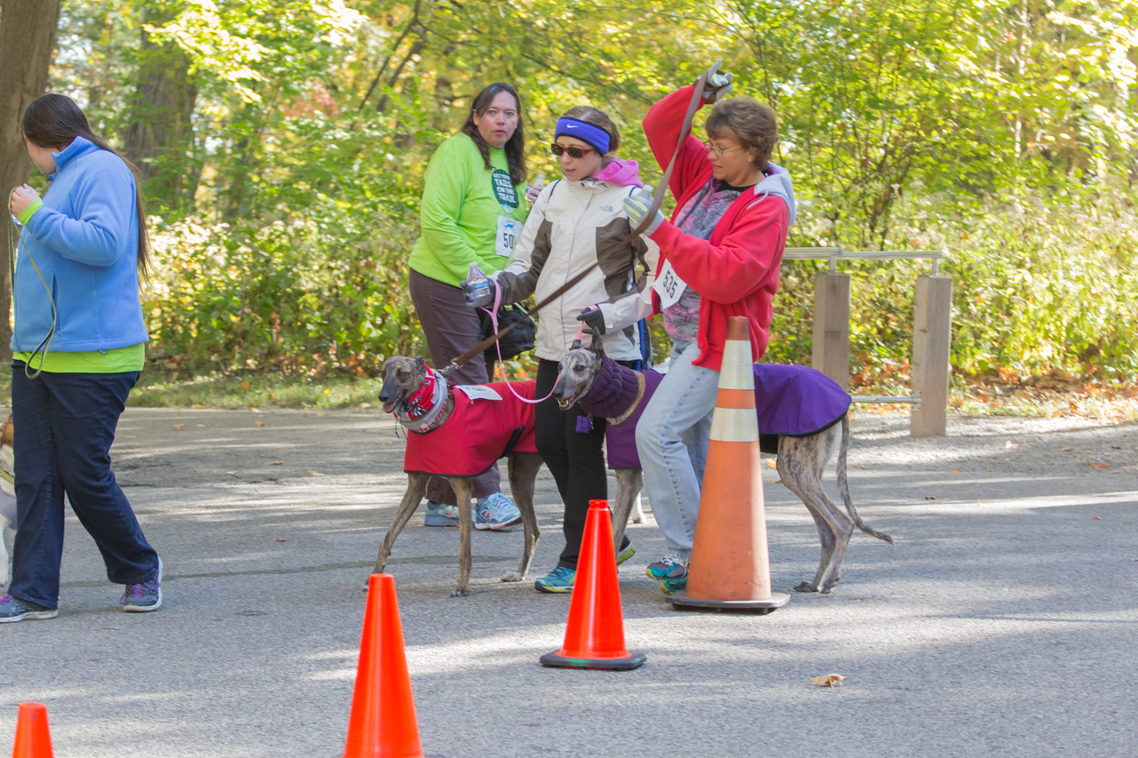 2015Pawjoggers-7828