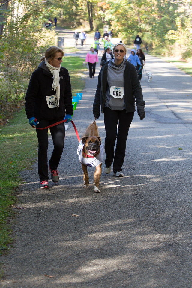 2015Pawjoggers-7633