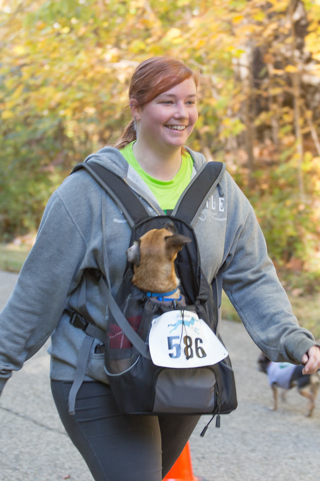 2015Pawjoggers-7495