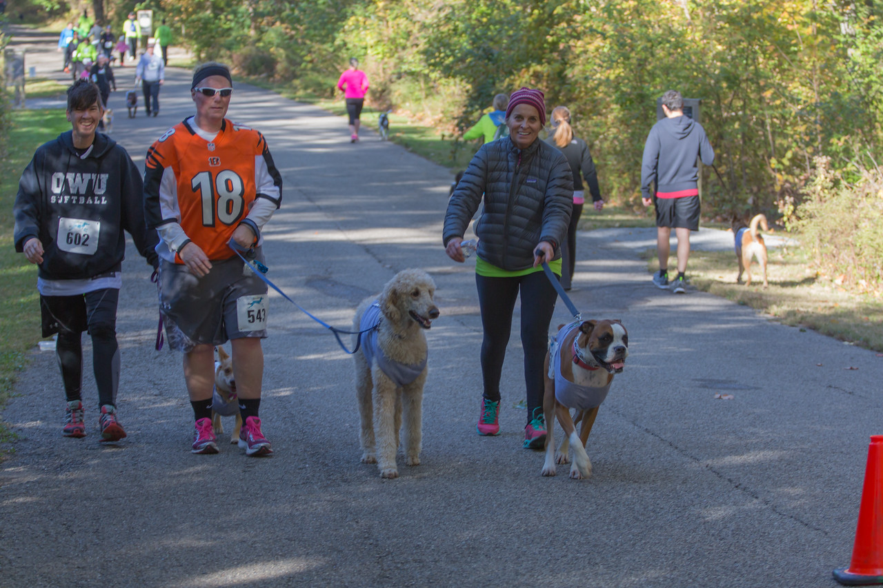 2015Pawjoggers-7315