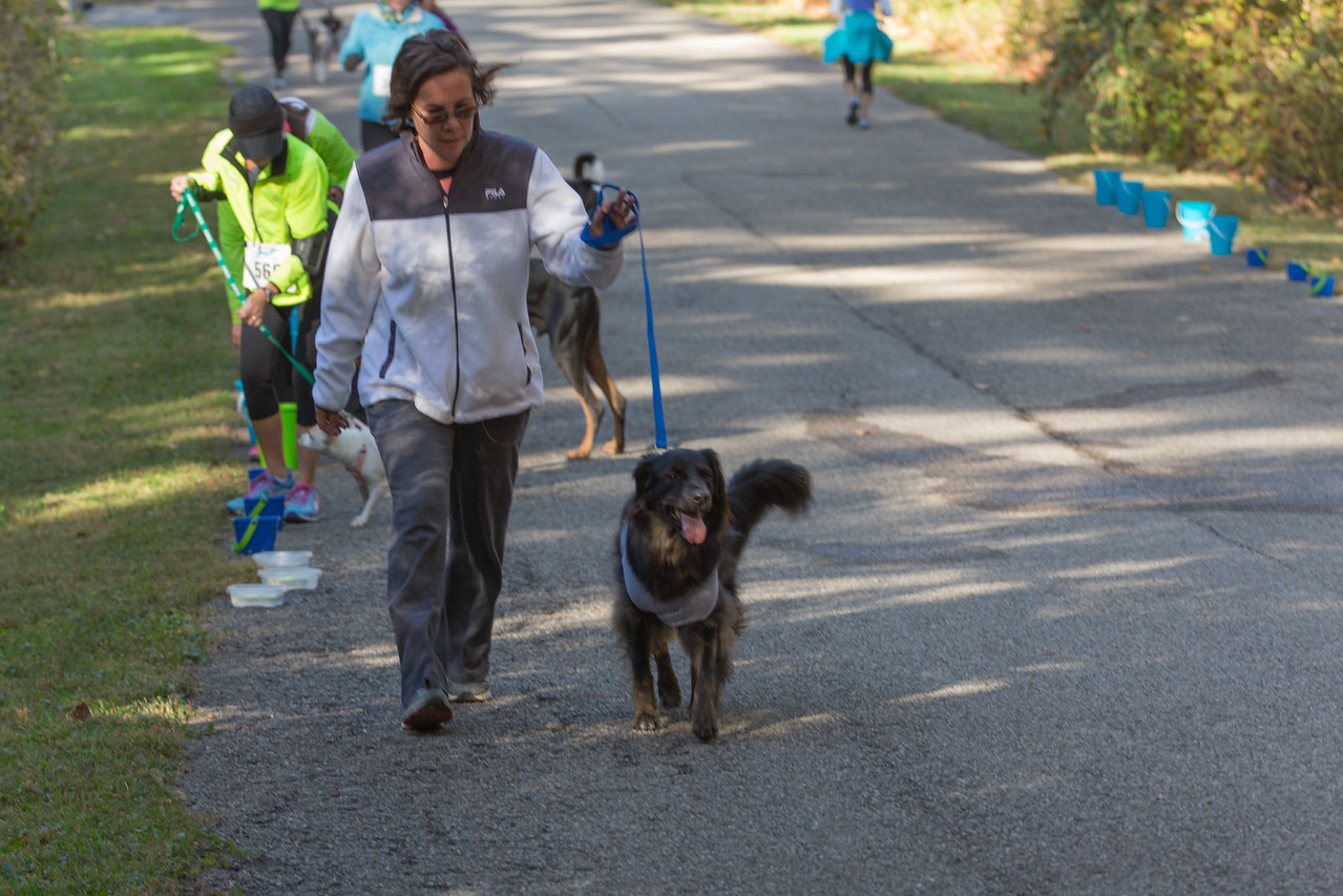 2015Pawjoggers-6983