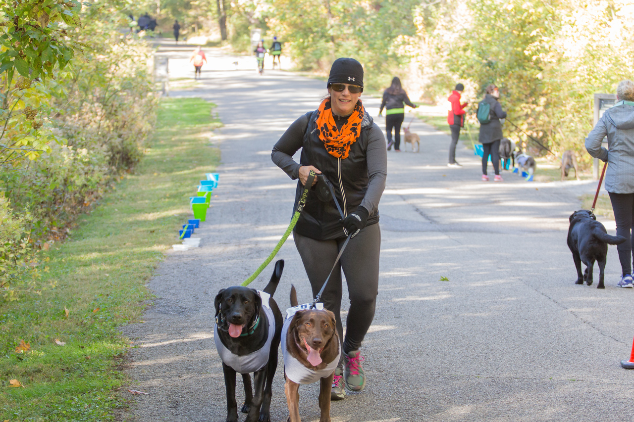 2015Pawjoggers-7593