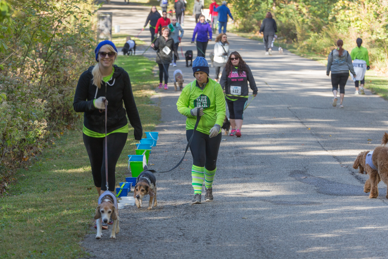 2015Pawjoggers-7533