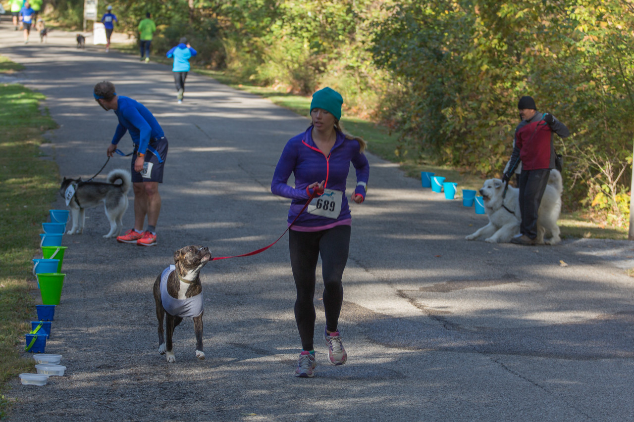 2015Pawjoggers-6749