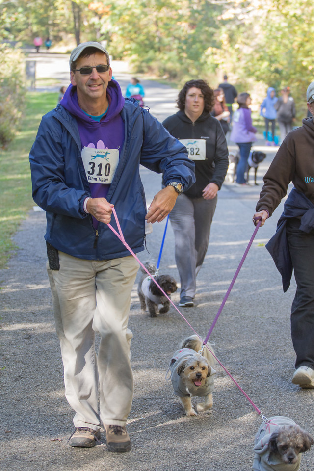 2015Pawjoggers-7738
