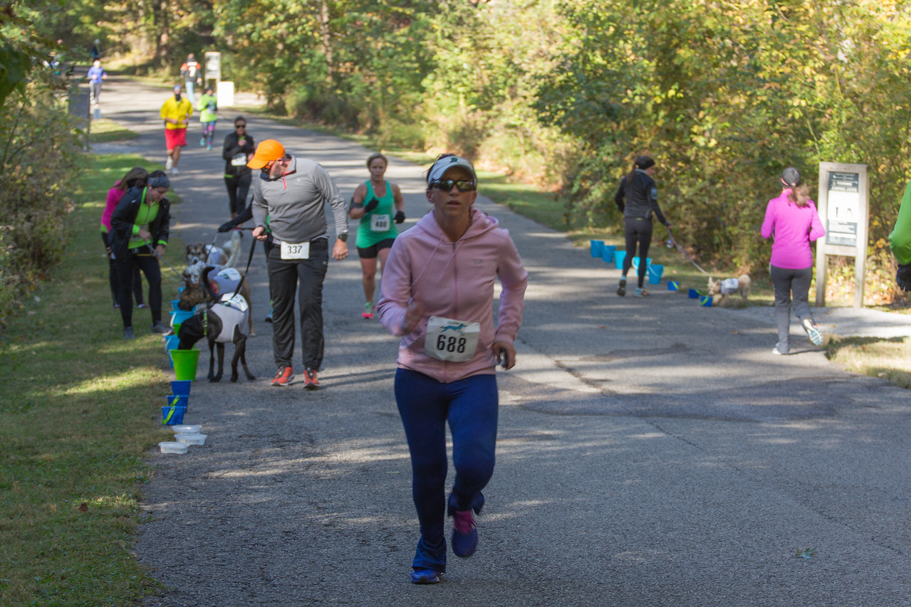 2015Pawjoggers-6902