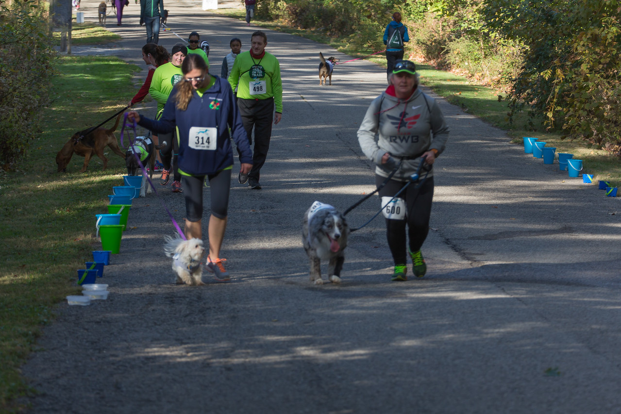 2015Pawjoggers-7187