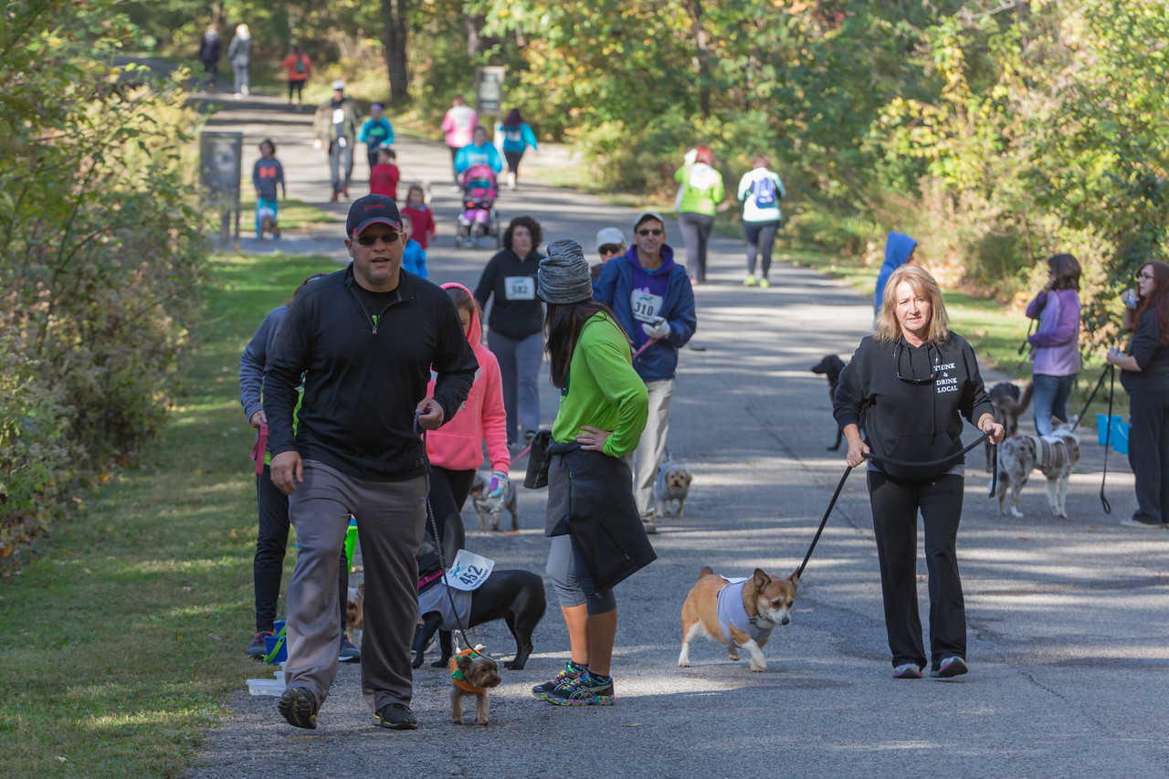 2015Pawjoggers-7718