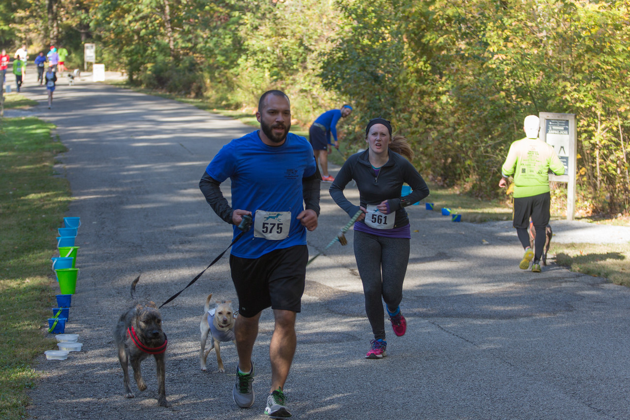 2015Pawjoggers-6788