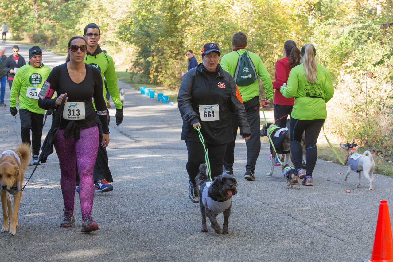 2015Pawjoggers-7241