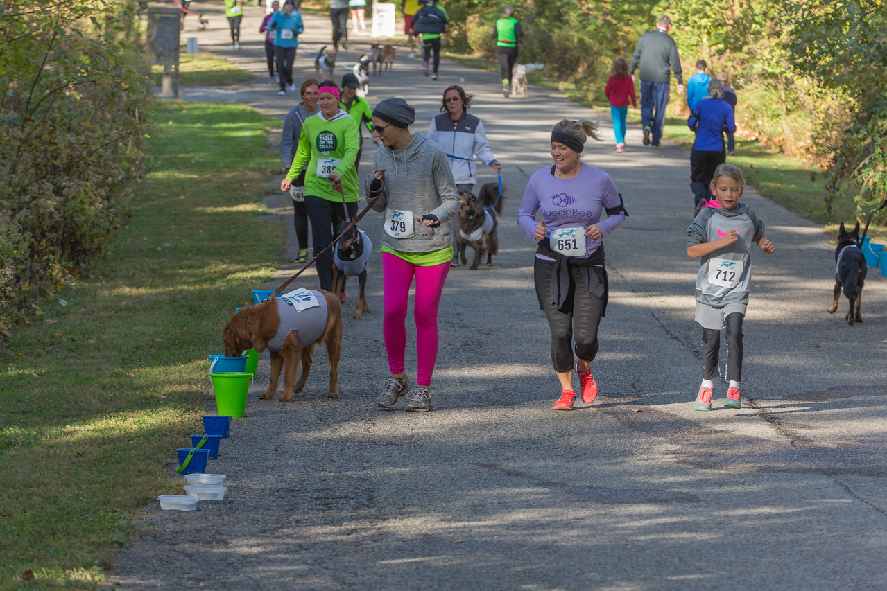 2015Pawjoggers-6962