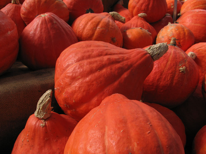 Orange flame shaped pumpkins.