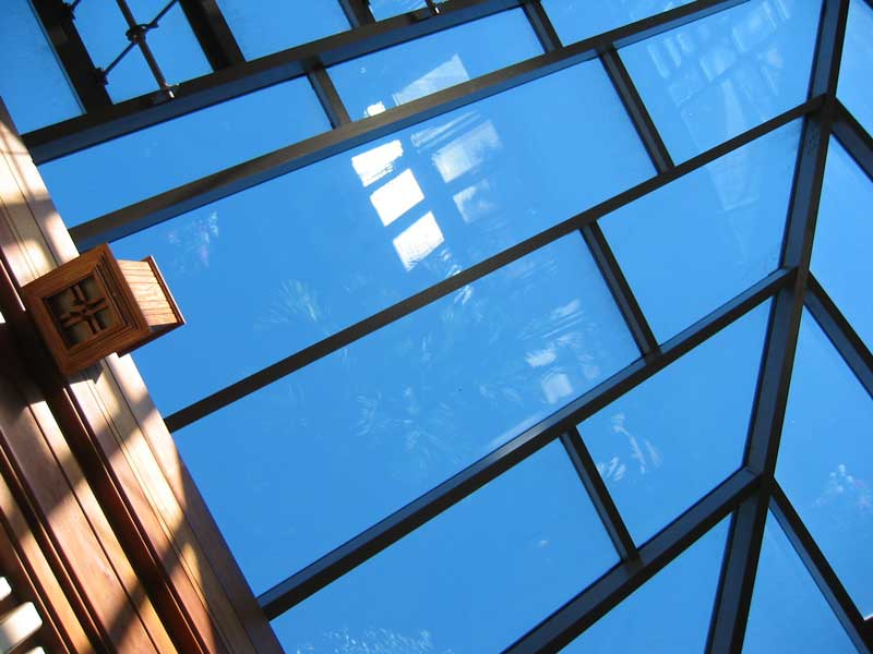 Looking up through the glass roof of the conservatory. It was an exceptionally nice day for the 31st of January.