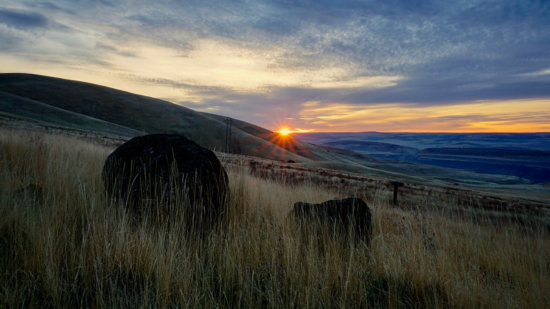Columbia Hills, Eastern Washington