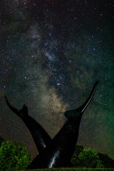 Whales Tails and Milkyway