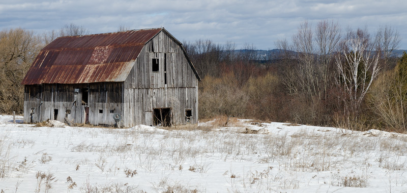 Abandoned Barn in Spring