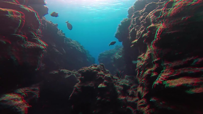 Diving 3 Room Cave and Paradise Pinnacle on the Kona Coast.