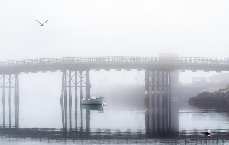 Of Fog, Flight and Footpaths