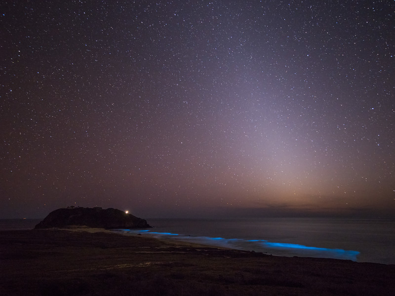 Point Sur Night Lights