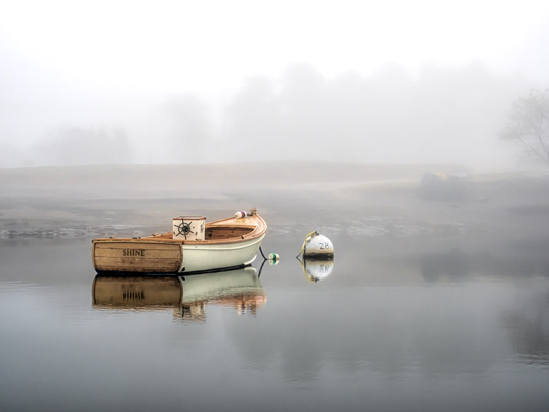 Shine On Fog