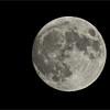 Moon Image<br /> Grimsby Ontario, Canada<br /> <br /> ray@raymondbarlow.com<br /> Swarovski Scope, Jobu Gimbal Head - Algonquin Tripod<br /> Nikon D810<br /> 1/200s f/1.0 iso100