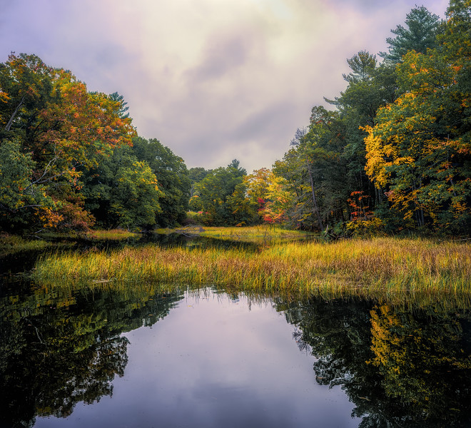 Fall Arrives at Shorey's Brook