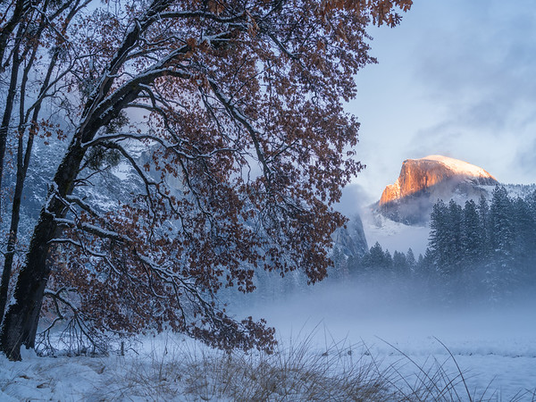 Half Dome from Cook's Meadow, Winter