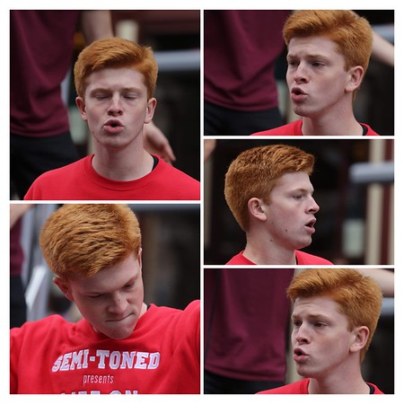 Ginger Collage