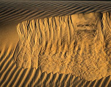 Dune Slide # 2
