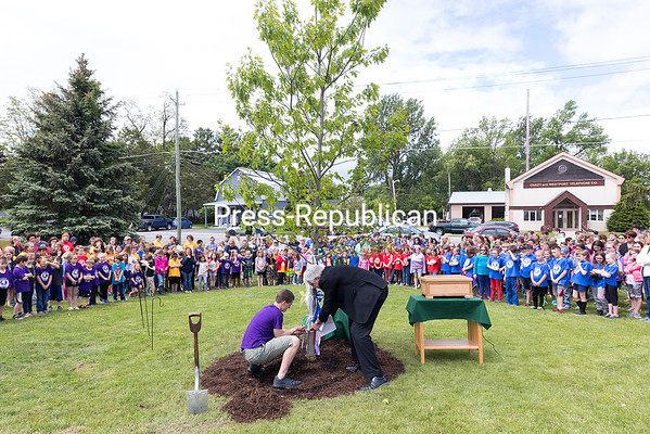 GABE DICKENS/ P-R PHOTO<br /> Seamus Andrew, Chazy Central Rural School's ninth-grade representative, ties purple and white ribbons to a newly planted oak tree with the help of CCRS Superintendent John Fairchild during the recent Centennial Tree Dedication Ceremony on school grounds. The Centennial Time Capsule was also unveiled, filled with various artifacts and memorabilia related to the school's history and centennial celebration, 100 Years of Excellence, that took place last October. It will be placed in the school, to be unsealed 25 years from now by a new generation of students.