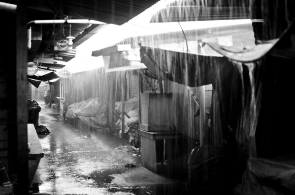 Rain in the market