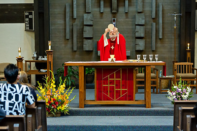 May 15, 2016 - 11:30 Mass by Fr. Dave Gese