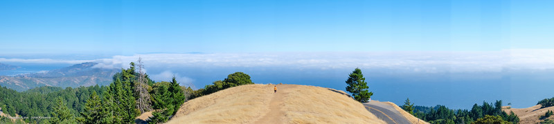 View from Mt Tam, above the fog