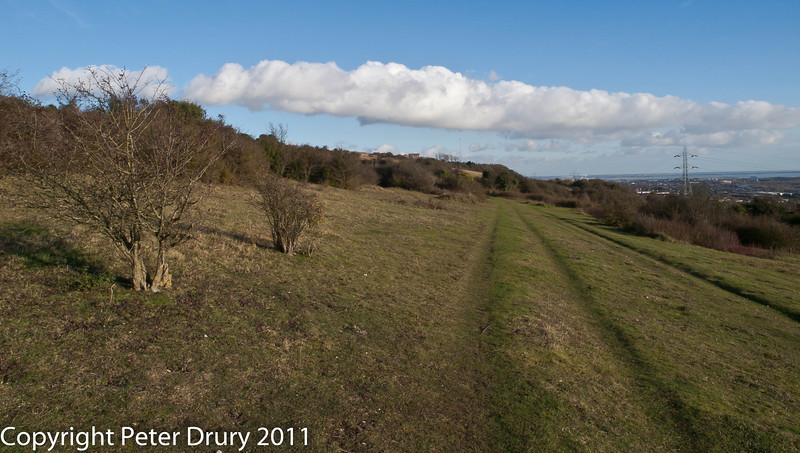 Portchester Common.  Copyright Peter Drury 2011