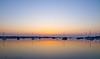 23 April 2011. Dawn scenes from Langstone/Hayling Island Bridge. Sunrise  Copyright Peter Drury 2011