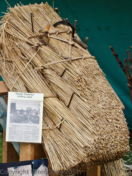 10 July 2011 Woodcraft fair 2011. The skillfull art of thatching. The sign proclaims '10,000 years of thatcherism'. An interesting play on words!. It is surprising how, even now, to enter villiages in England and still see thatched cottages. A wonderful living legacy.