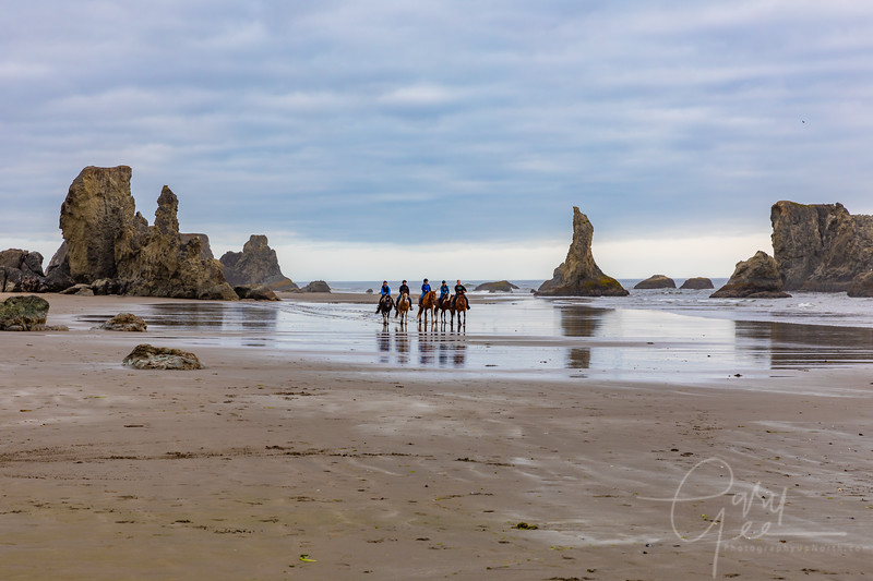 Bandon, Oregon - Surprise visit in the middle of my photo shoot
